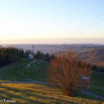 colline al tramonto