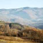 il Monte Penice come sfondo per le colline