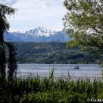 Lago di Viverone - 9