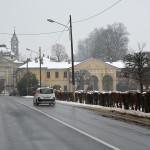 La villa padronale e la chiesa di Sant'Antonio