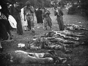 Foiba di Vines (Albona d'Istria): recupero cadaveri a fine 1943.  fonte Wikipedia.